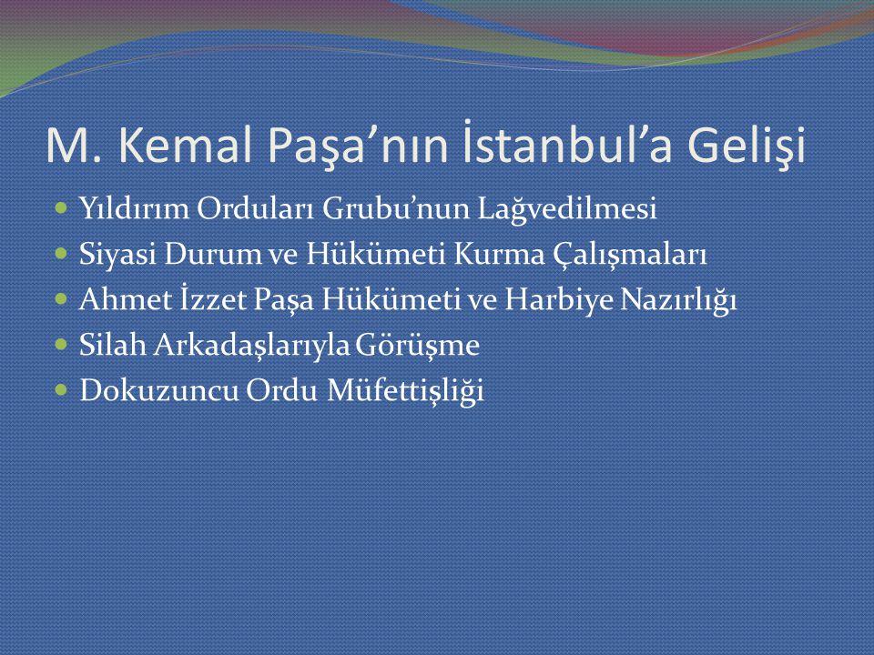 M. Kemal Paşa'nın İstanbul'a Gelişi