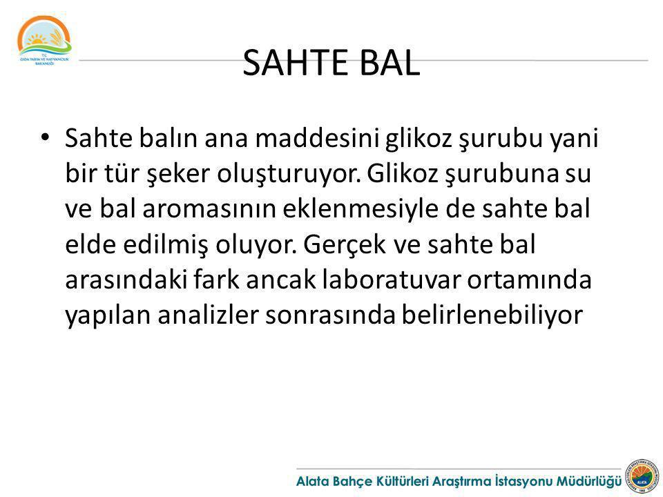 SAHTE BAL