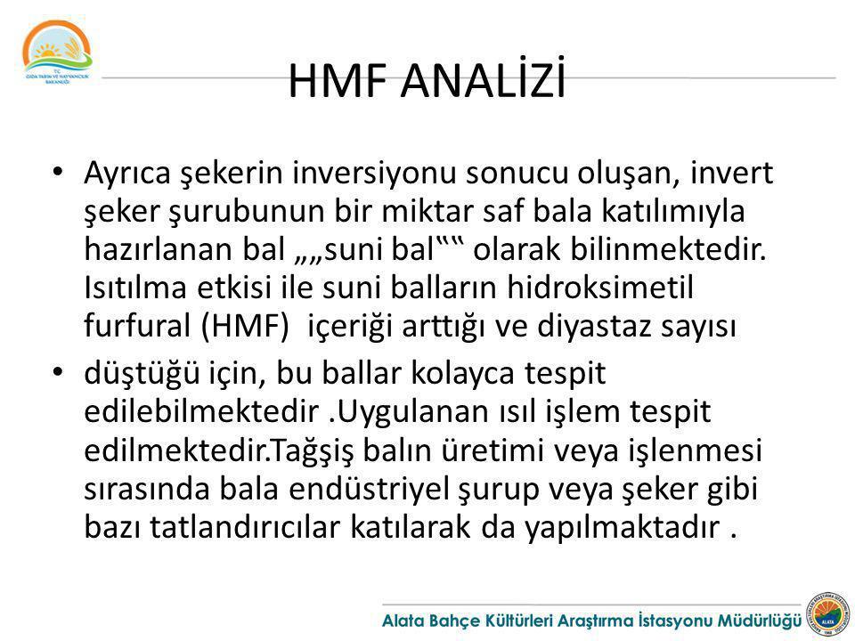 HMF ANALİZİ