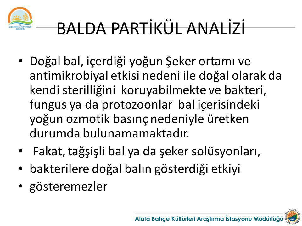 BALDA PARTİKÜL ANALİZİ