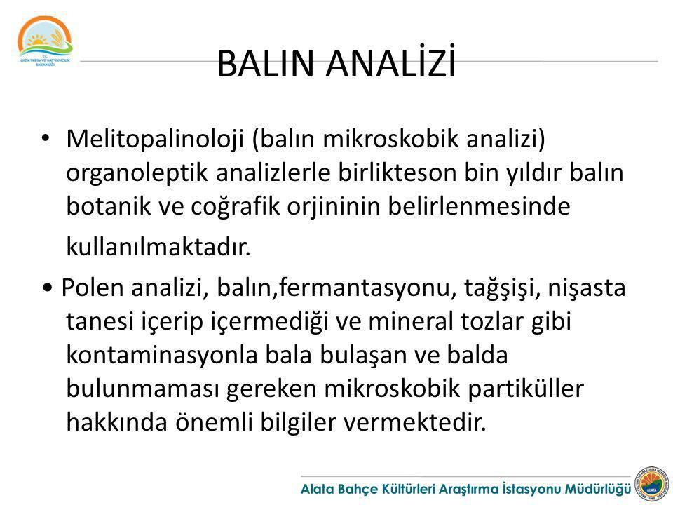 BALIN ANALİZİ