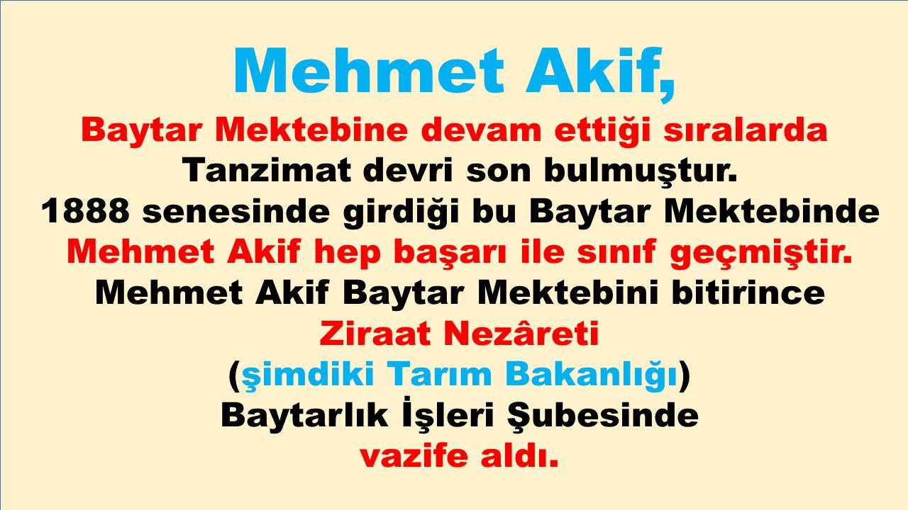 Mehmet Akif, Baytar Mektebine devam ettiği sıralarda
