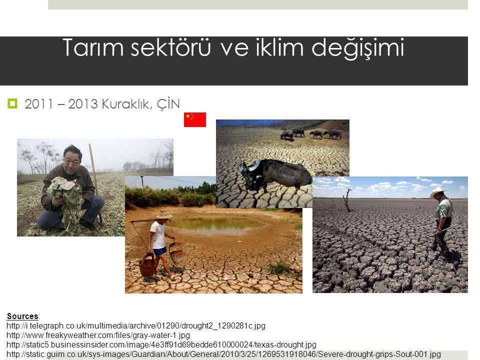Tarım sektörü ve iklim değişimi