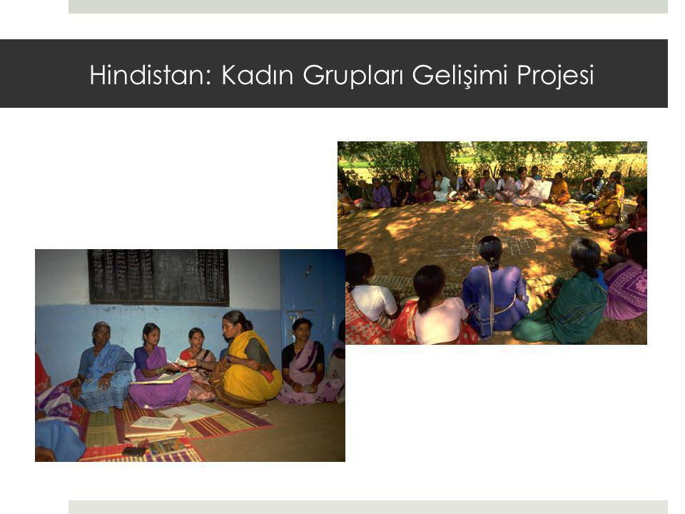 Hindistan: Kadın Grupları Gelişimi Projesi