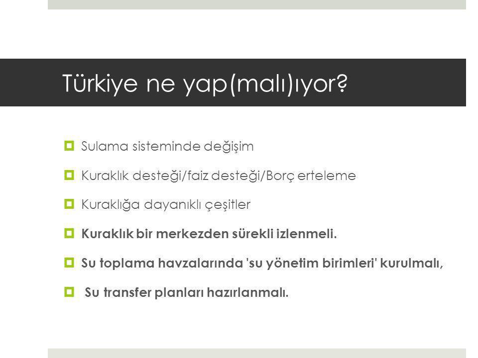 Türkiye ne yap(malı)ıyor