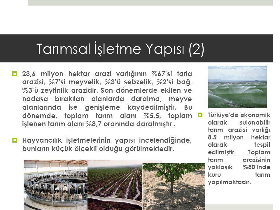 Tarımsal İşletme Yapısı (2)