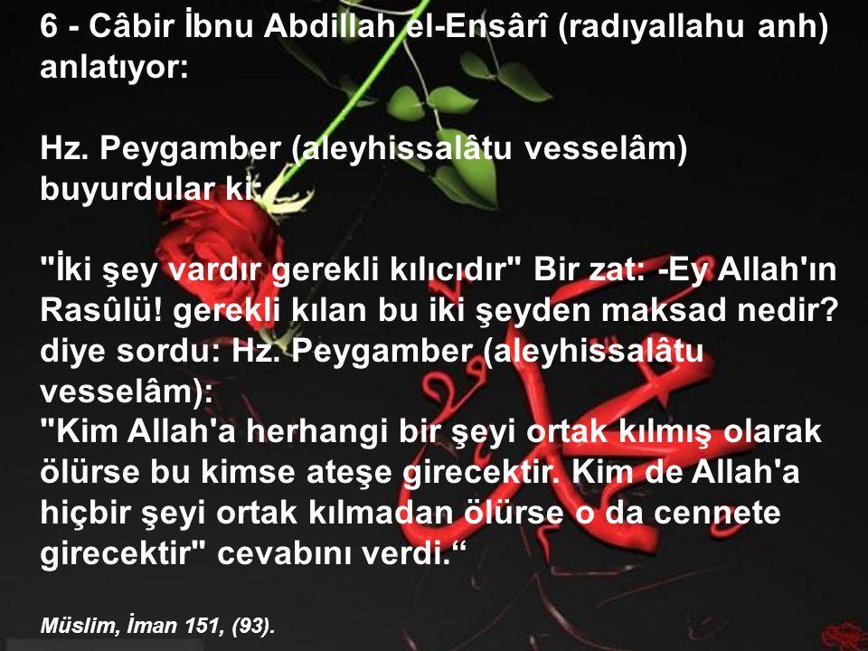 6 - Câbir İbnu Abdillah el-Ensârî (radıyallahu anh) anlatıyor: