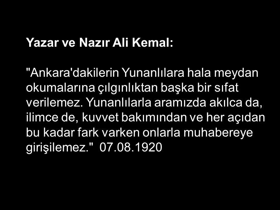 Yazar ve Nazır Ali Kemal: Ankara dakilerin Yunanlılara hala meydan okumalarına çılgınlıktan başka bir sıfat verilemez.