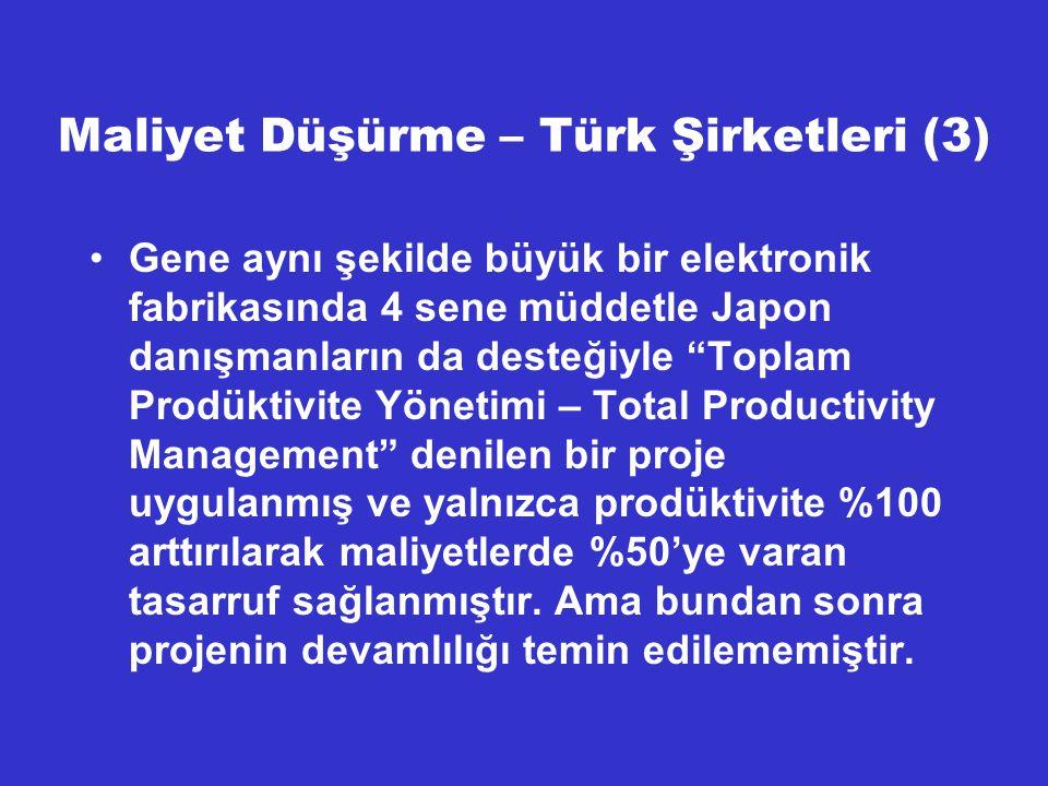 Maliyet Düşürme – Türk Şirketleri (3)