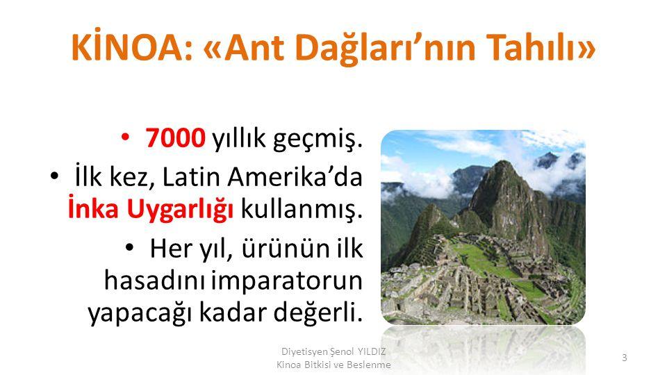 KİNOA: «Ant Dağları'nın Tahılı»