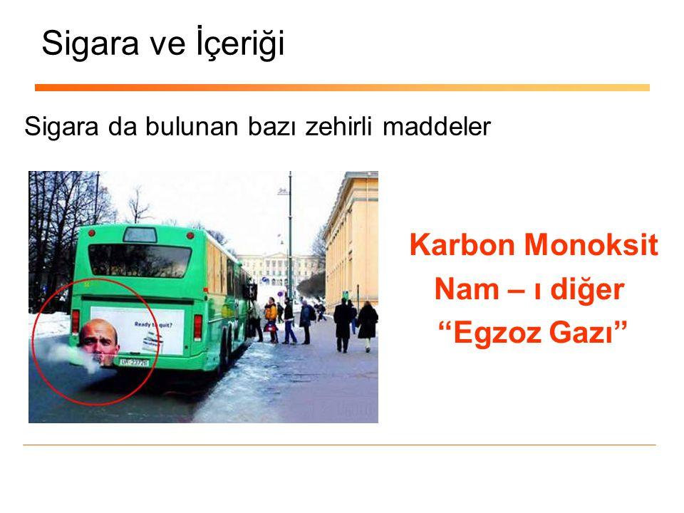Sigara ve İçeriği Karbon Monoksit Nam – ı diğer Egzoz Gazı