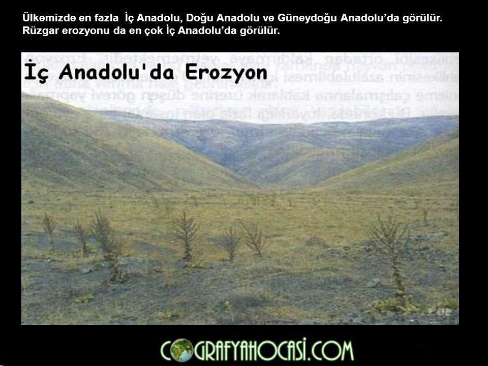 Ülkemizde en fazla İç Anadolu, Doğu Anadolu ve Güneydoğu Anadolu'da görülür.