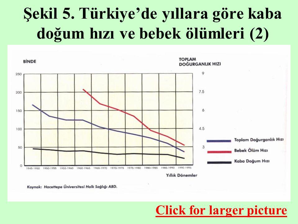 Şekil 5. Türkiye'de yıllara göre kaba doğum hızı ve bebek ölümleri (2)