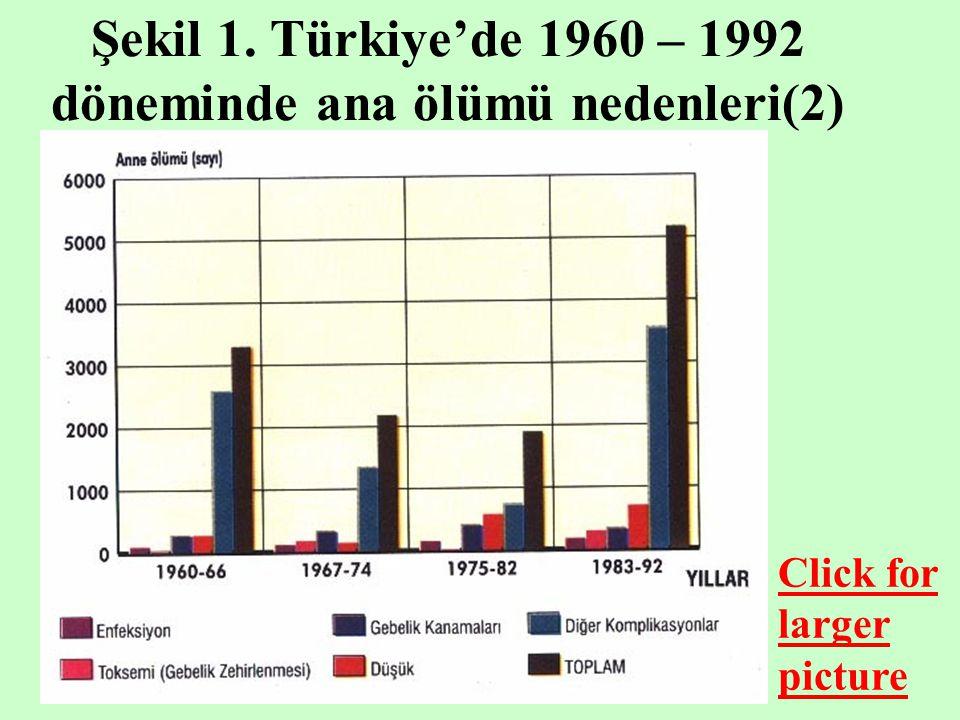 Şekil 1. Türkiye'de 1960 – 1992 döneminde ana ölümü nedenleri(2)