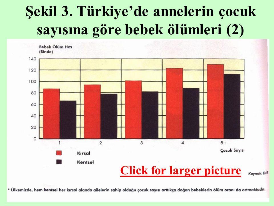 Şekil 3. Türkiye'de annelerin çocuk sayısına göre bebek ölümleri (2)