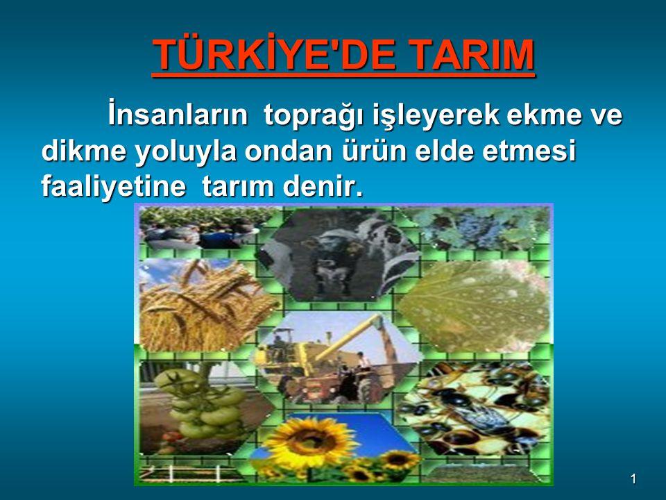 TÜRKİYE DE TARIM İnsanların toprağı işleyerek ekme ve dikme yoluyla ondan ürün elde etmesi faaliyetine tarım denir.