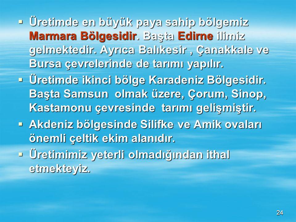 Üretimde en büyük paya sahip bölgemiz Marmara Bölgesidir