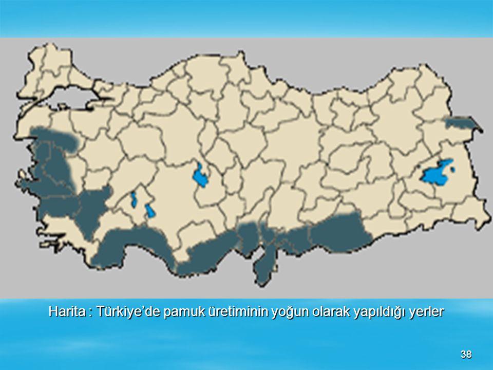 Harita : Türkiye'de pamuk üretiminin yoğun olarak yapıldığı yerler