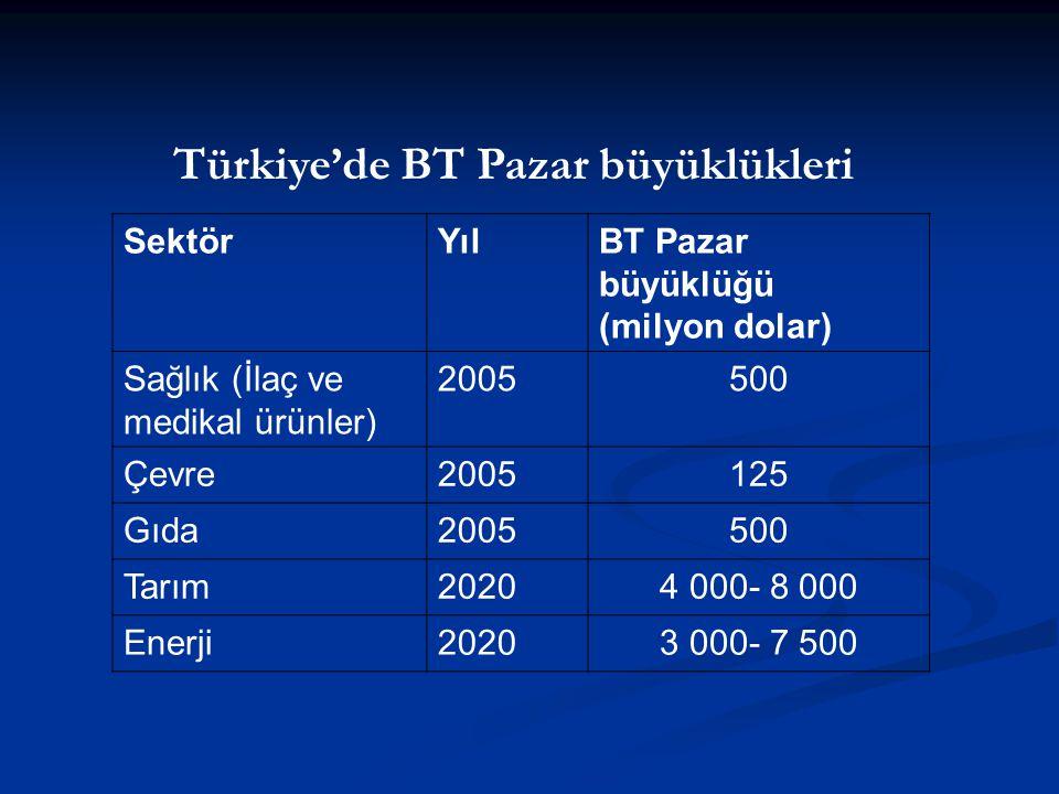Türkiye'de BT Pazar büyüklükleri