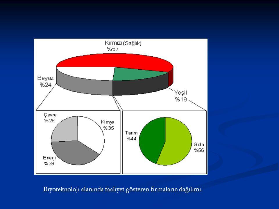 Biyoteknoloji alanında faaliyet gösteren firmaların dağılımı.