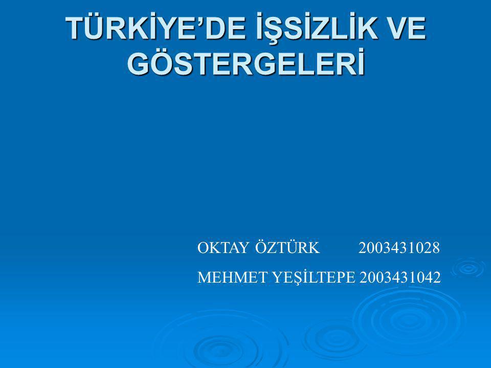 TÜRKİYE'DE İŞSİZLİK VE GÖSTERGELERİ