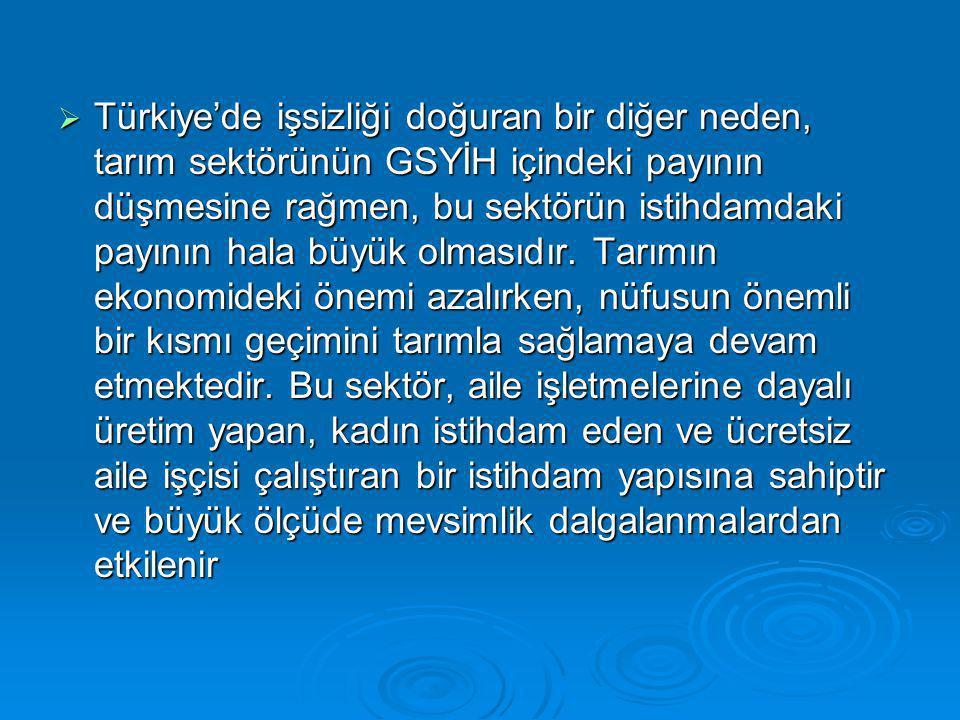 Türkiye'de işsizliği doğuran bir diğer neden, tarım sektörünün GSYİH içindeki payının düşmesine rağmen, bu sektörün istihdamdaki payının hala büyük olmasıdır.