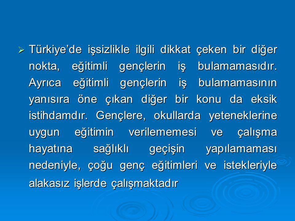 Türkiye'de işsizlikle ilgili dikkat çeken bir diğer nokta, eğitimli gençlerin iş bulamamasıdır.