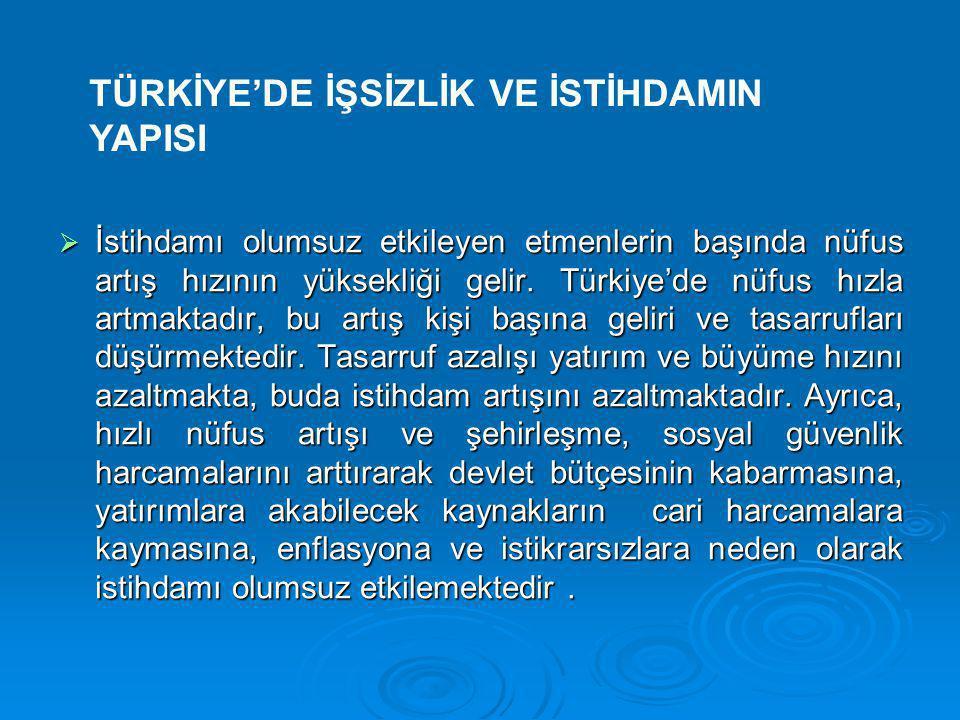 TÜRKİYE'DE İŞSİZLİK VE İSTİHDAMIN YAPISI