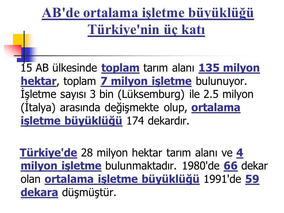 AB de ortalama işletme büyüklüğü Türkiye nin üç katı