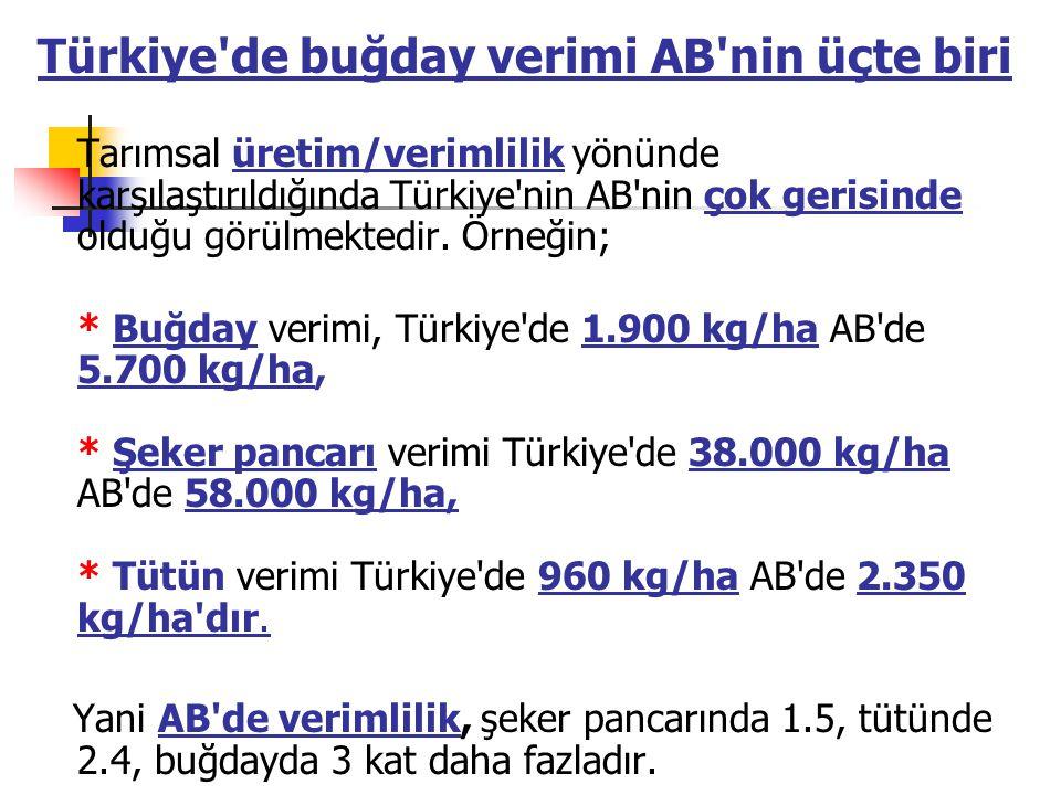 Türkiye de buğday verimi AB nin üçte biri Tarımsal üretim/verimlilik yönünde karşılaştırıldığında Türkiye nin AB nin çok gerisinde olduğu görülmektedir. Örneğin;