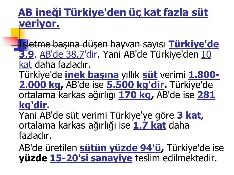 AB ineği Türkiye den üç kat fazla süt veriyor