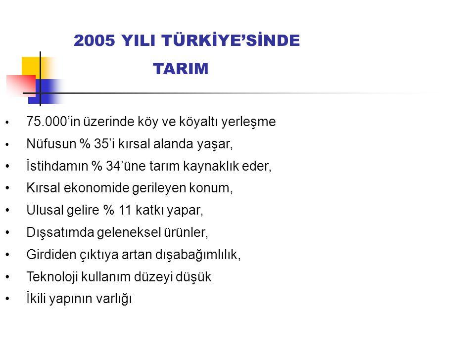 2005 YILI TÜRKİYE'SİNDE TARIM