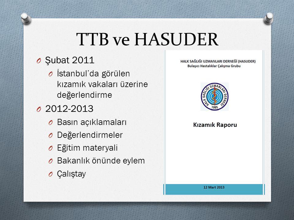 TTB ve HASUDER Şubat 2011. İstanbul'da görülen kızamık vakaları üzerine değerlendirme. 2012-2013.
