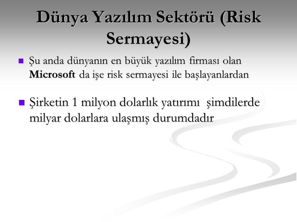 Dünya Yazılım Sektörü (Risk Sermayesi)