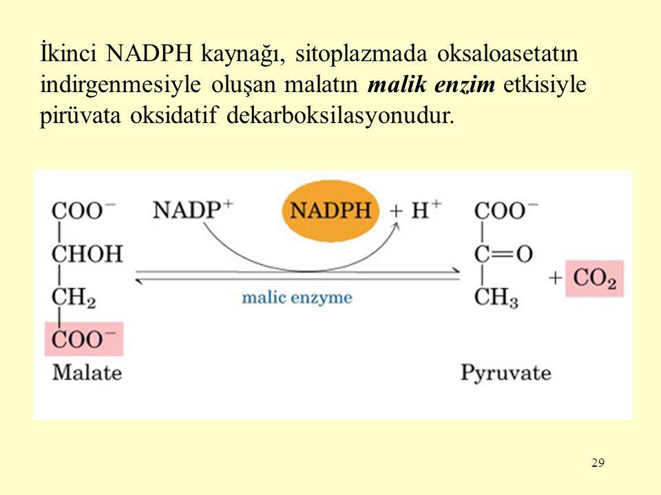 İkinci NADPH kaynağı, sitoplazmada oksaloasetatın indirgenmesiyle oluşan malatın malik enzim etkisiyle pirüvata oksidatif dekarboksilasyonudur.