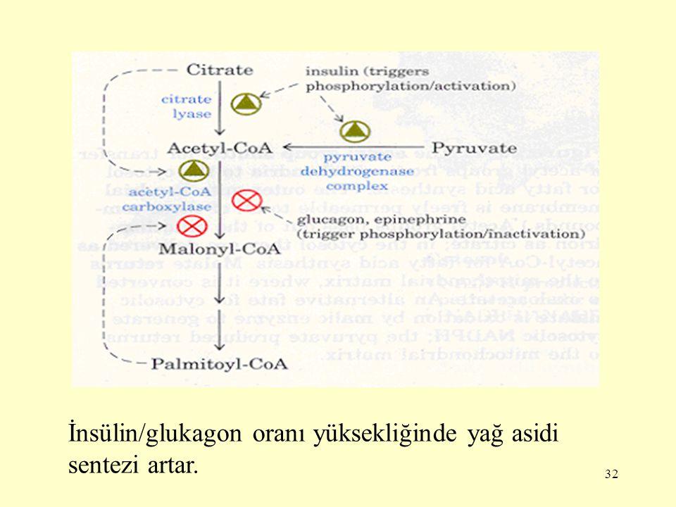 İnsülin/glukagon oranı yüksekliğinde yağ asidi sentezi artar.