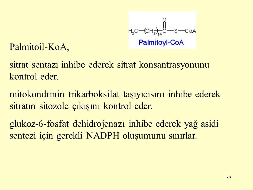 Palmitoil-KoA, sitrat sentazı inhibe ederek sitrat konsantrasyonunu kontrol eder.