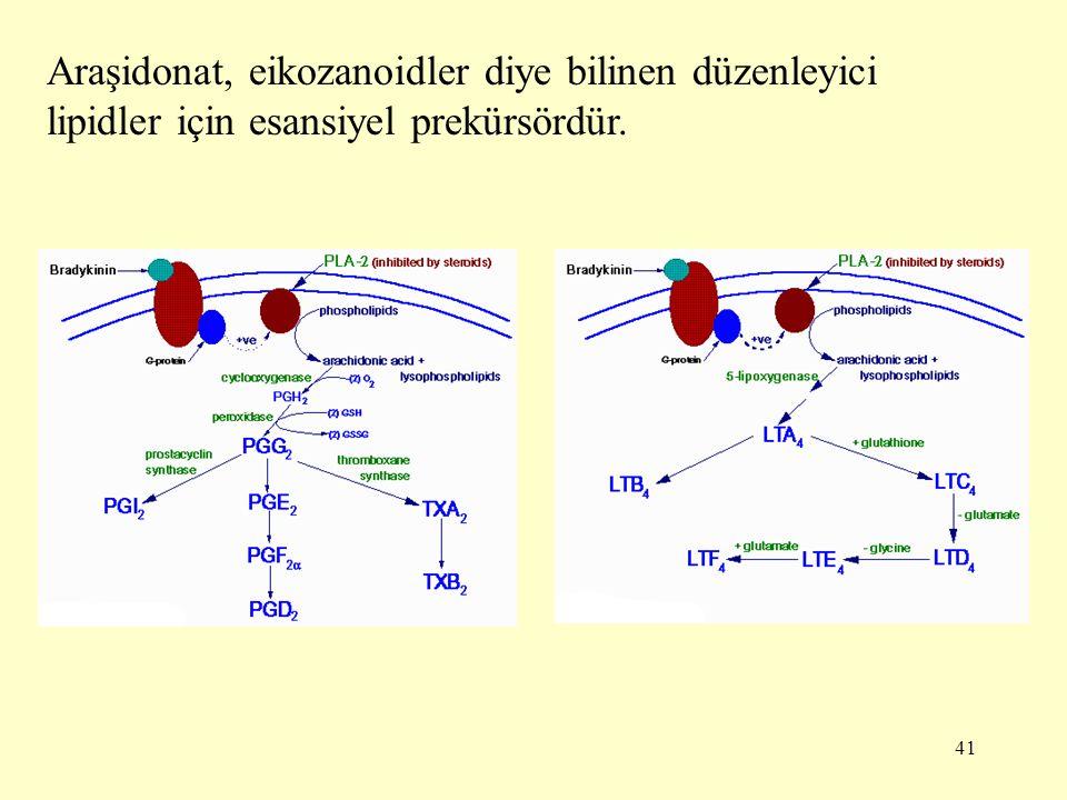 Araşidonat, eikozanoidler diye bilinen düzenleyici lipidler için esansiyel prekürsördür.