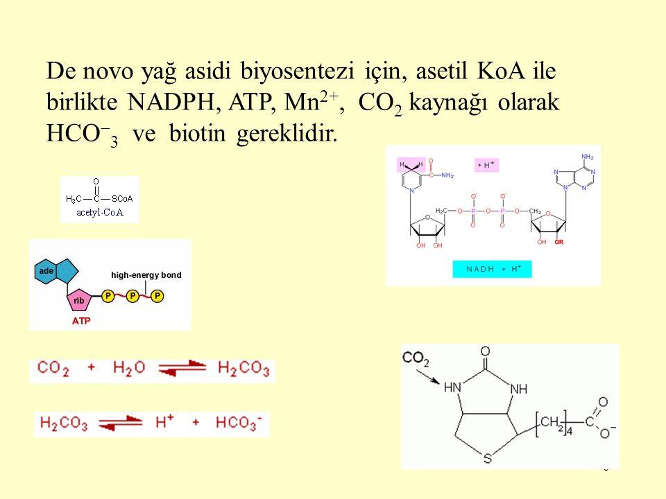 De novo yağ asidi biyosentezi için, asetil KoA ile birlikte NADPH, ATP, Mn2+, CO2 kaynağı olarak HCO3 ve biotin gereklidir.