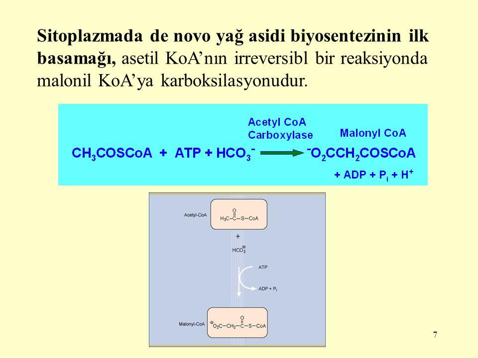 Sitoplazmada de novo yağ asidi biyosentezinin ilk basamağı, asetil KoA'nın irreversibl bir reaksiyonda malonil KoA'ya karboksilasyonudur.
