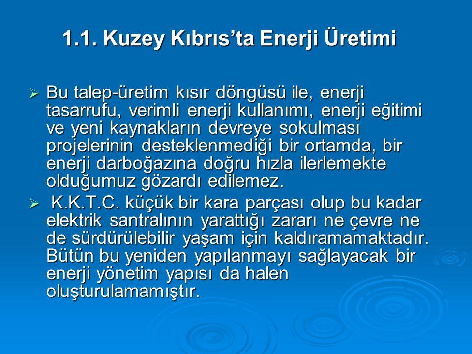 1.1. Kuzey Kıbrıs'ta Enerji Üretimi