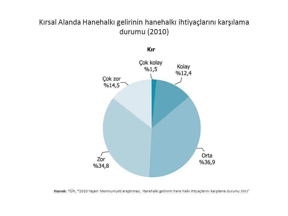 Kırsal Alanda Hanehalkı gelirinin hanehalkı ihtiyaçlarını karşılama durumu (2010)