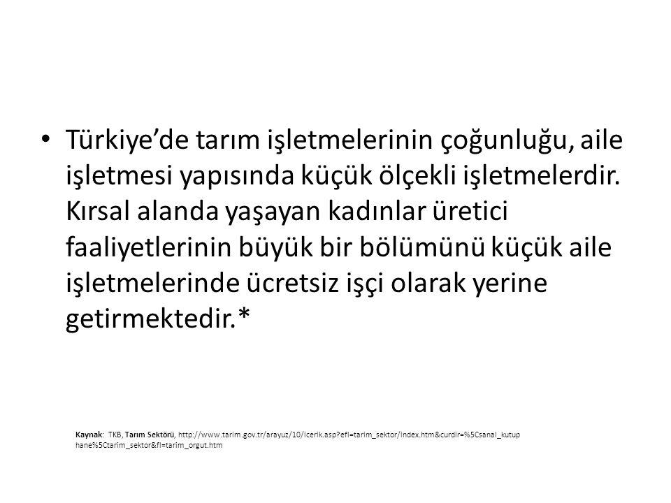 Türkiye'de tarım işletmelerinin çoğunluğu, aile işletmesi yapısında küçük ölçekli işletmelerdir. Kırsal alanda yaşayan kadınlar üretici faaliyetlerinin büyük bir bölümünü küçük aile işletmelerinde ücretsiz işçi olarak yerine getirmektedir.*