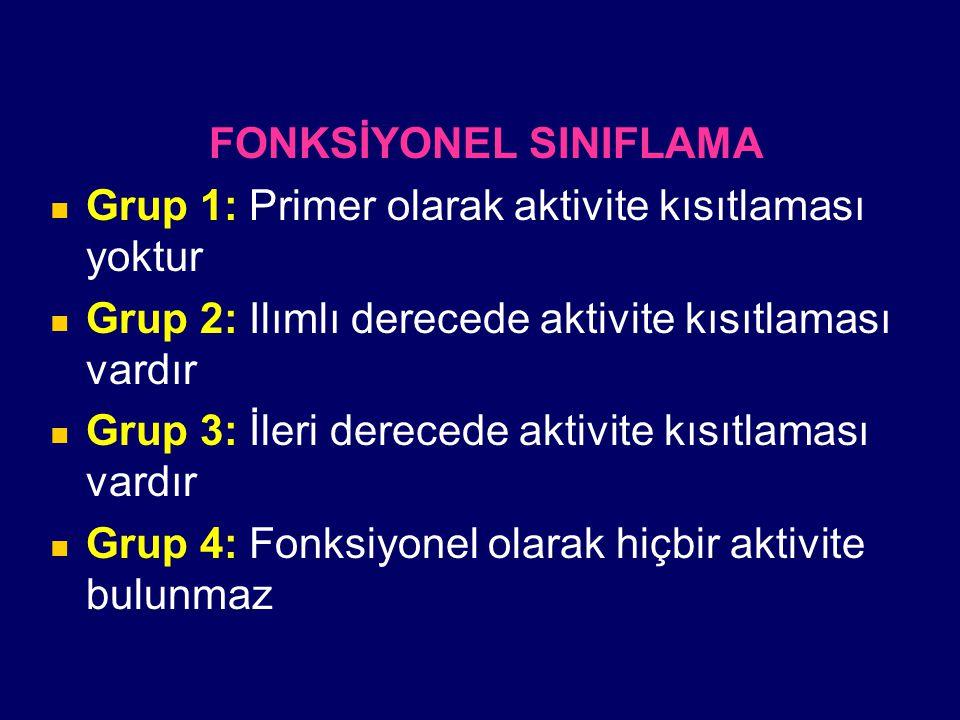 FONKSİYONEL SINIFLAMA