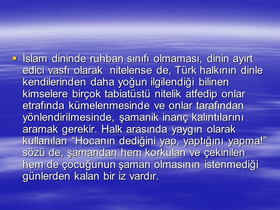 İslam dininde ruhban sınıfı olmaması, dinin ayırt edici vasfı olarak nitelense de, Türk halkının dinle kendilerinden daha yoğun ilgilendiği bilinen kimselere birçok tabiatüstü nitelik atfedip onlar etrafında kümelenmesinde ve onlar tarafından yönlendirilmesinde, şamanik inanç kalıntılarını aramak gerekir.