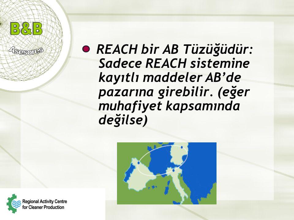 REACH bir AB Tüzüğüdür: Sadece REACH sistemine kayıtlı maddeler AB'de pazarına girebilir.