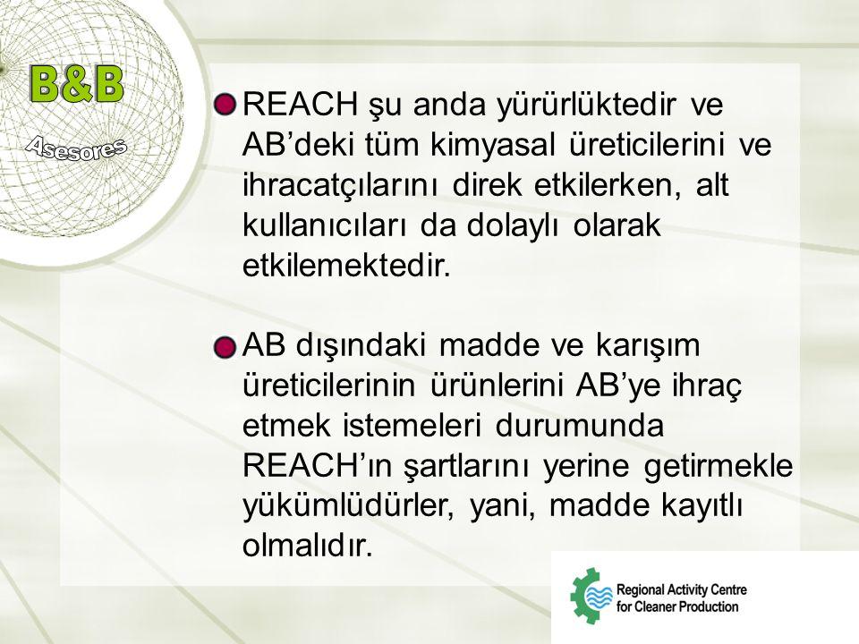 REACH şu anda yürürlüktedir ve AB'deki tüm kimyasal üreticilerini ve ihracatçılarını direk etkilerken, alt kullanıcıları da dolaylı olarak etkilemektedir.