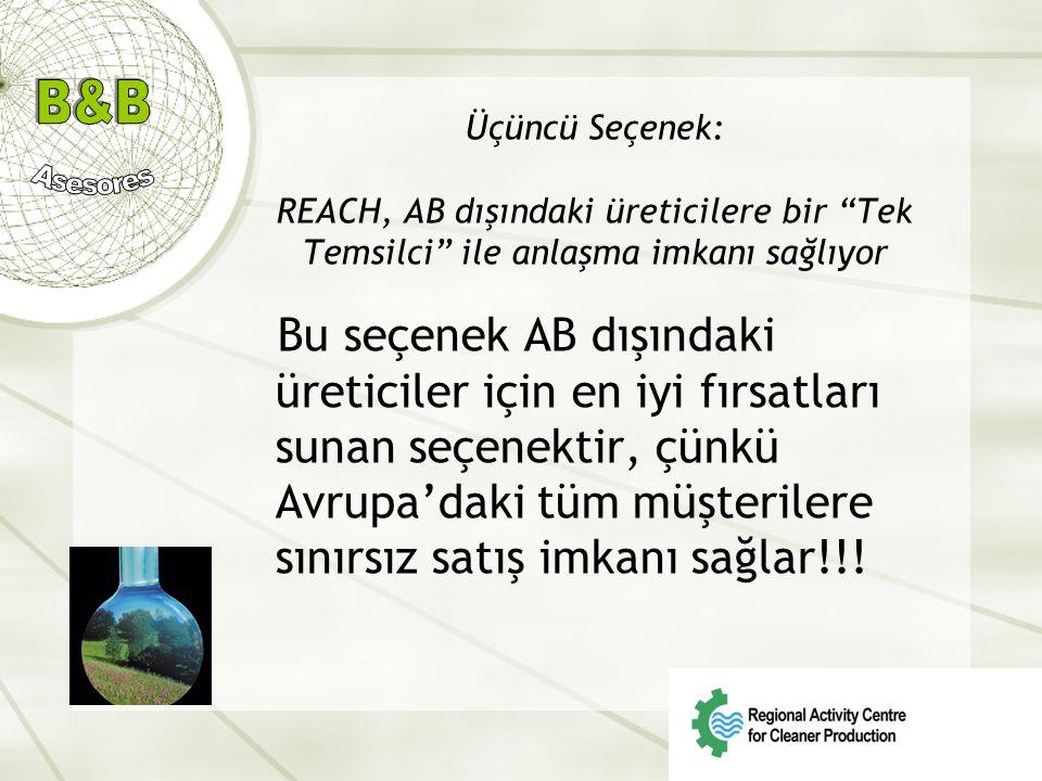 Üçüncü Seçenek: REACH, AB dışındaki üreticilere bir Tek Temsilci ile anlaşma imkanı sağlıyor