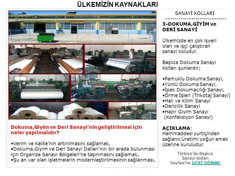 Türkiye'de Başlıca Sanayi Kolları Sayfası'na GERİ DÖNME