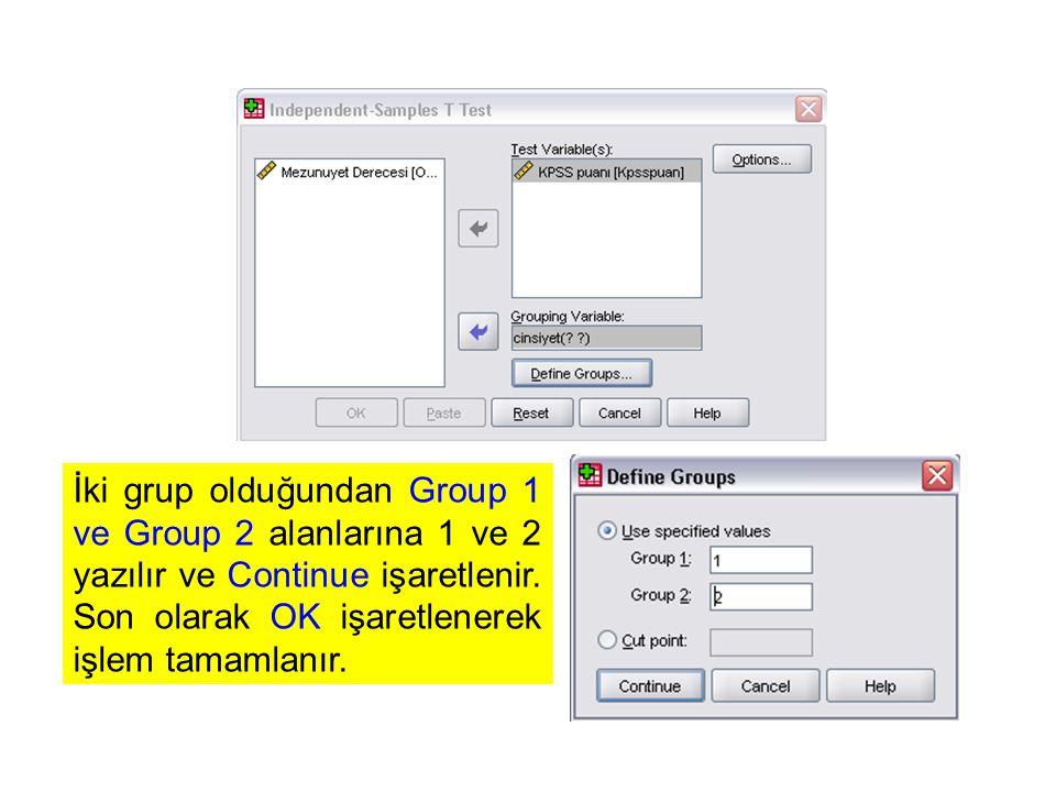 İki grup olduğundan Group 1 ve Group 2 alanlarına 1 ve 2 yazılır ve Continue işaretlenir.